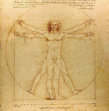 Leonardo da Vinci, Leonardo, da Vinci, art, anatomy, propotion
