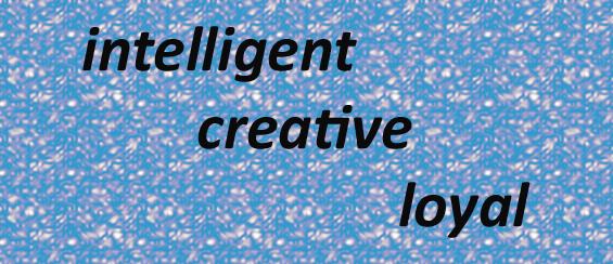 Intelligent Creative Loyal